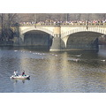 prague vltava river swim hardy swimmer bridge