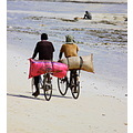 ride bicycle beach sand sea zanzibar