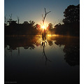 reflectionthursday sun burst trees perth hills littleollie