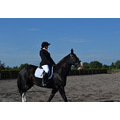 Helen was taking part in a dressage competition yesterday (and I was babysitting Ralph for her.)