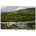 Carragh River Killorglin Kerry Ireland Peter OSullivan