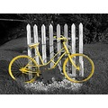 yellow bike fence black white dog