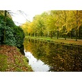 netherlands groeneveld autumn tree water nethx groex treex waten autux