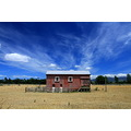 shearing shed opaki wairarapa blue sky cloud