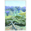 art painting original illustration landscape