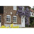 Hause with wisteria on it