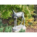 Sculpture Mol Leo Garden WHITE TAILED DEER
