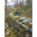 dry stone wall moss steps countryside nature