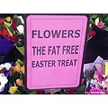 To those that need an alternative to chocolate, don't think it will taste as nice.  Happy easte...