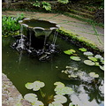 wetfriday pond fountain lilypads
