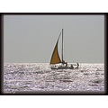 Sailing on a silver sea