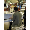 eastern caribbean cruise princess ship bride groom piano pianist