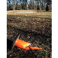 orange cone towergrovepark stlouis missouri