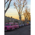 street road tree trees taxis taxi sunset glow