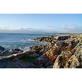 vacation africa gansbaai