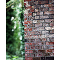bridge bricks leaves