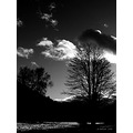Blackandwhite BW silhouette landscape light clouds sky
