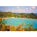 Oil effects-- St. Johns, Virgin Islands