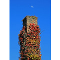 devonport blue sky bluesky moon chimney