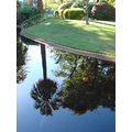 reflectionthursday downtown park perth littleollie