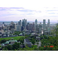 Downtown Montreal from the mountain