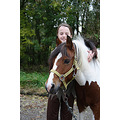 halloween pony horse kids riding school