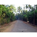 only road diveagar konkan coast maharashtra india