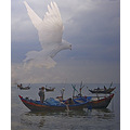vietnam phanthiet boat water bird vietx phanx boatv watev birdx