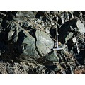serpentine serpentinite geology sierranevada