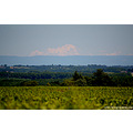 beaujolais mont blanc alpes mountain wines panorama landscape