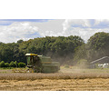 farm combine wheat