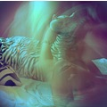 experimental zebra cat shot spliffy weird toy fun on request keitology
