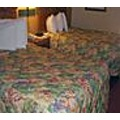 quality suites orlando convention center quality suites hotel orlando quality