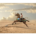 cowboy horse desert cat gull photomontage surreal carousel
