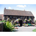 England Pub flowers summer halftimbered ancient