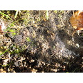October 2012