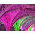 multi coloured arches fountains abbey