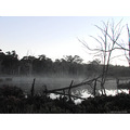 smoke fog water early morning colour saturation perth hills littleollie