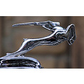 chrysler bonnet hood ornament
