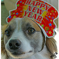 """Happy New Year to all """"let's hope it's a good one without any fear""""          John and Yoko"""