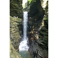 Watkins Glen Finger Lakes