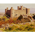 Photos From Our Travels  HARLECH CASTLE * WALES