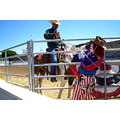 o c fair rodeo rodeo clown veekay the clown