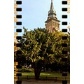 CITY HALL TOWER, SUBOTICA SERBIA