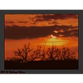 landscape spring sun sky clouds sunset tree celestial phenomenon