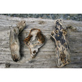 driftwood for zanzess!