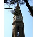 italy arezzo architecture church tower italx arezx churi archi towei