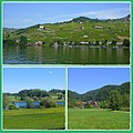 sceneryfriday funfriday landscapes Switzerland collage