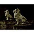 animal lions sculpture stone artistic monochrome