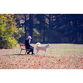 autumn fall girl dog pet nature park forest nikon sigma varna bulgaria